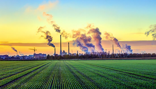 Industrial Pollution and Agriculture